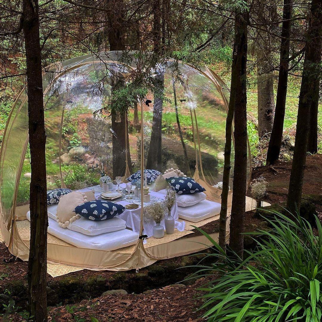 picnic en burbuja